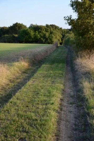 blog-de-voyage-campagne-beauce-voyage-en-famille-nature-champs-champs-de-ble-voyage-et-enfantthumb_dsc_0534_1024
