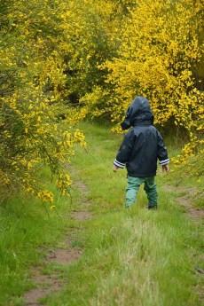 Loisirs Loire Valley enfant marchant dans un chemin