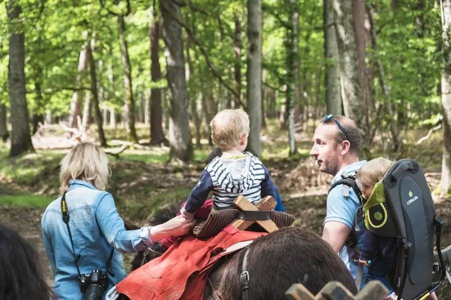 randonnée en âne en famille