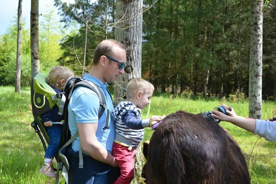 famille en rando avec un âne, blog voyage de famille