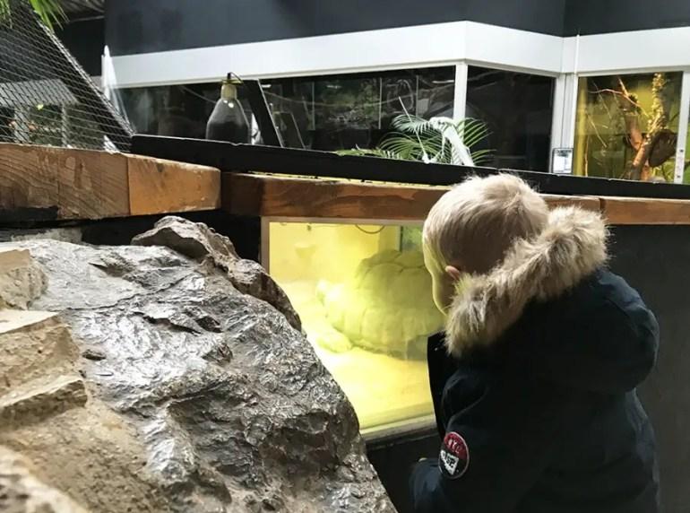 découvrir le zoo de Lille avec les enfants
