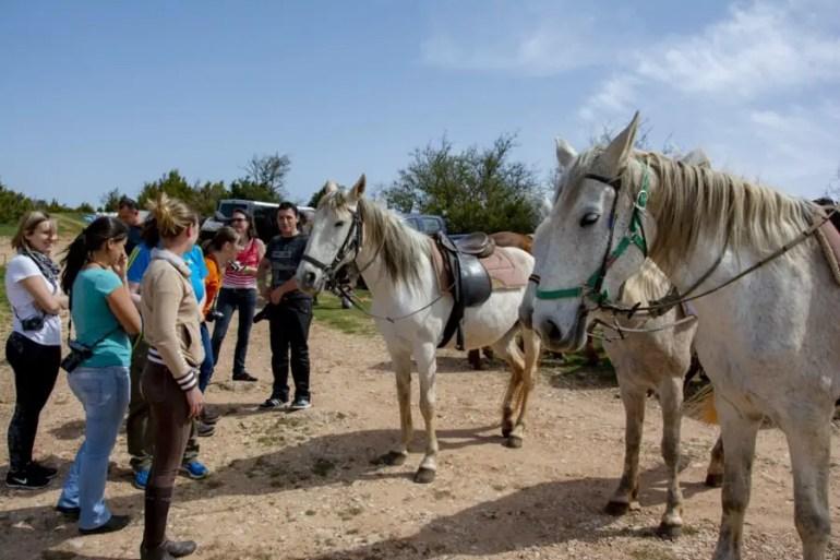 que faire en aveyron avec des enfants Destination Aveyron en famille