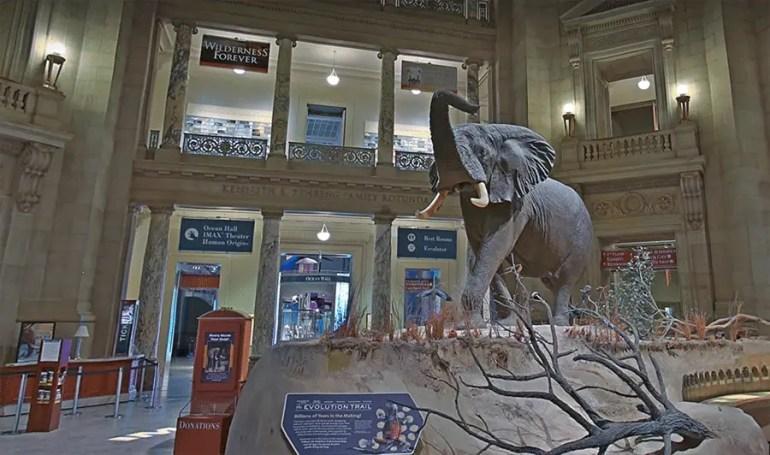 musées virtuels à découvrir en période de confinement