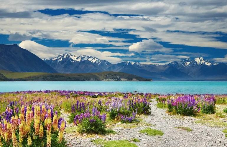 Road trip en Nouvelle zélande en famile : préparer son roadtrip