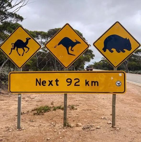 Sur les routes d'Australie en famille