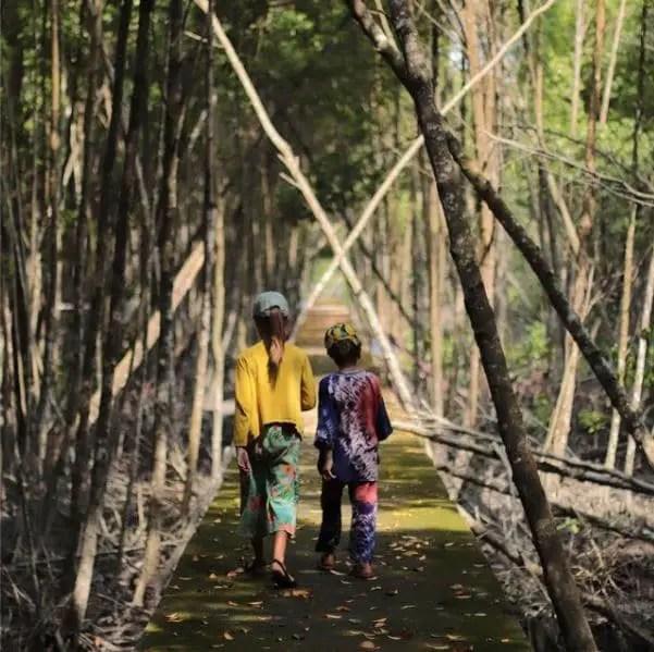 Tour du monde enfants - Mangrove
