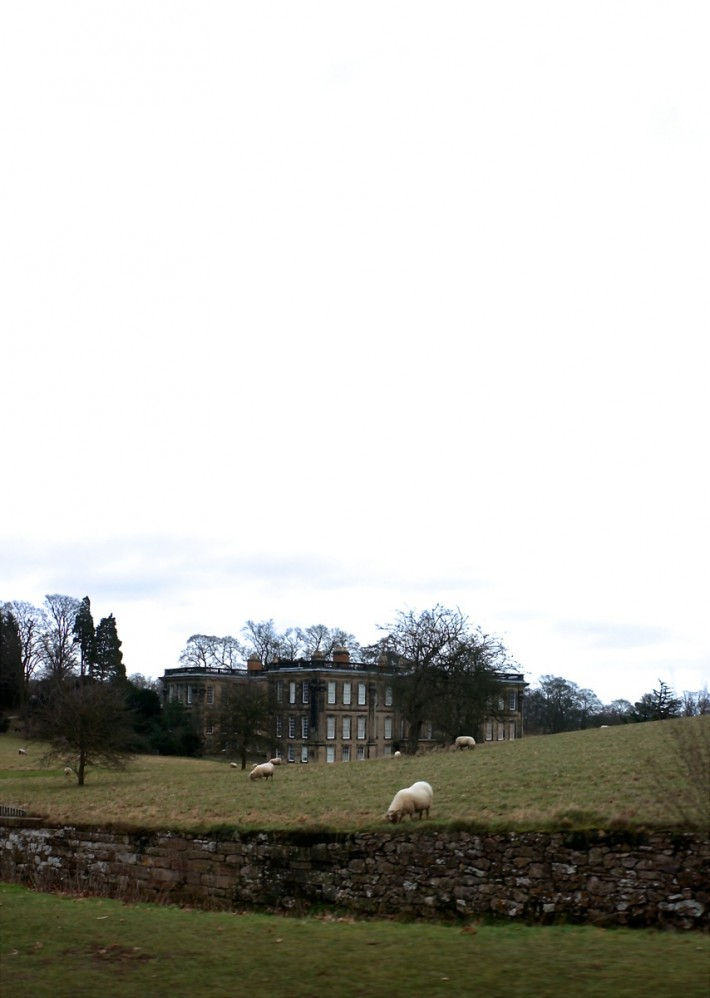 Calke Abbey National Trust-37