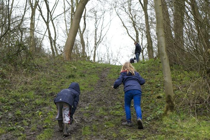 Bunny Wood Nature Walk - 4
