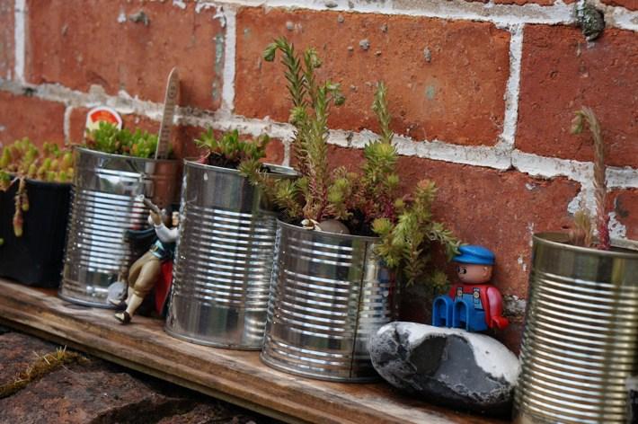 Garden-in-May-10