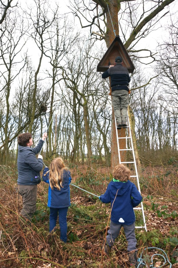 Putting up the barn owl box with Macclesfield RSPB