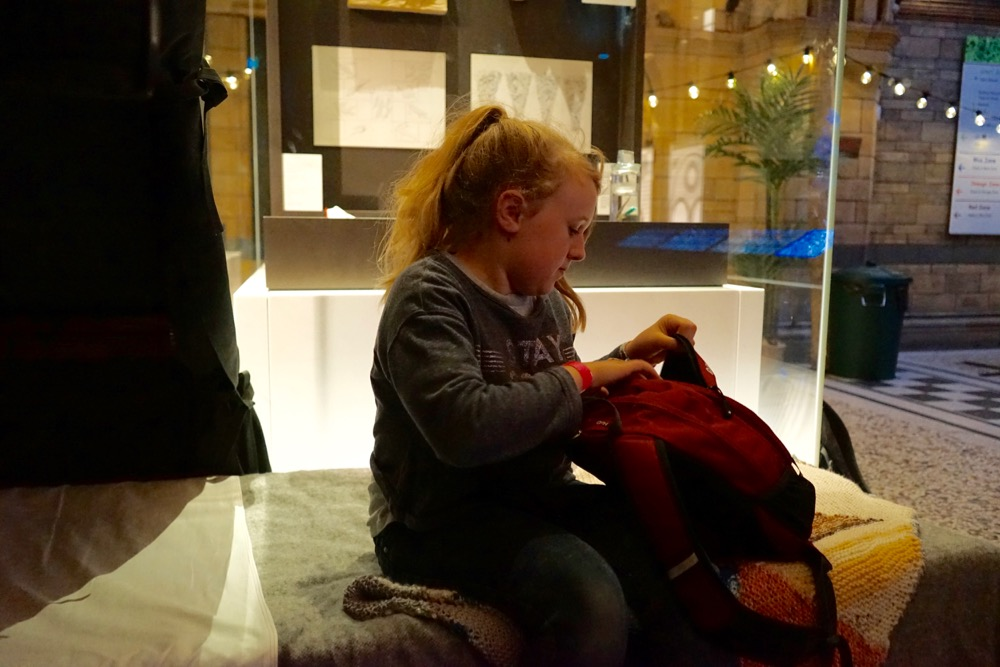 Dinosnores at the National History Museum and the Airbnb Base Camp Experience