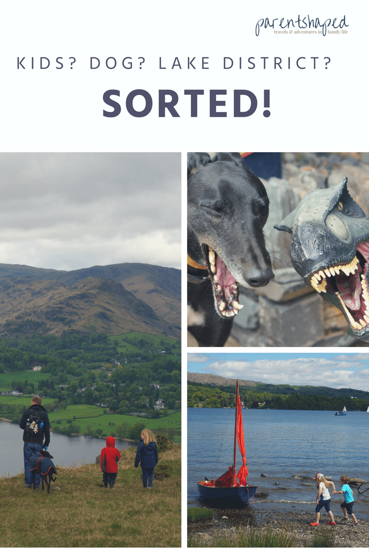 Things to do in the Lake District with kids and a dog, find your perfect dog and child friendly holiday cottage, choose some great things to do - climb a fell, explore Ambleside, take a boat cruise on Windermere, picnic at Wray castle, plus some top tips to keep all the family happy.