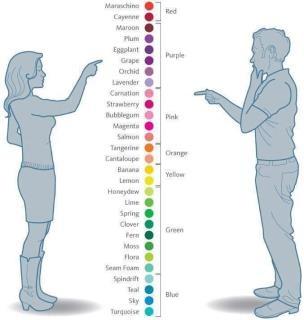 forskel på mænd og kvinder