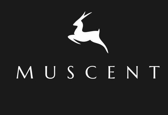 Muscent Parfüm