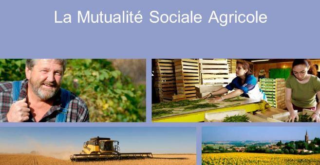 Mutualité Sociale Agricole