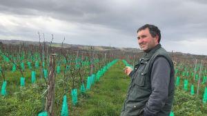 Salon de l'agriculture : le modèle de Buzet où la longue transition de la viticulture porte ses fruits - France 3 Nouvelle-Aquitaine