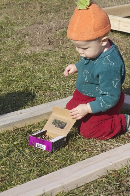 baby looking inside a box of nails