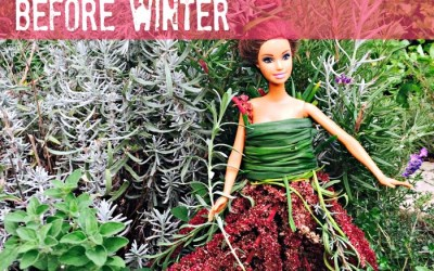 What to do in the Garden Before Winter – Find Out!