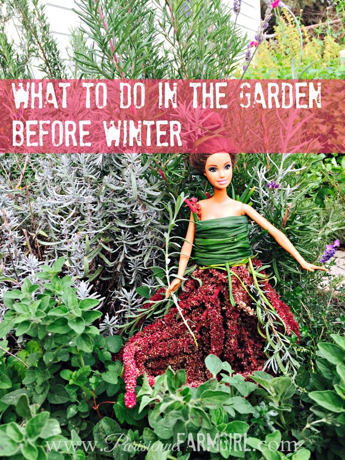 What to do in the Garden Before Winter