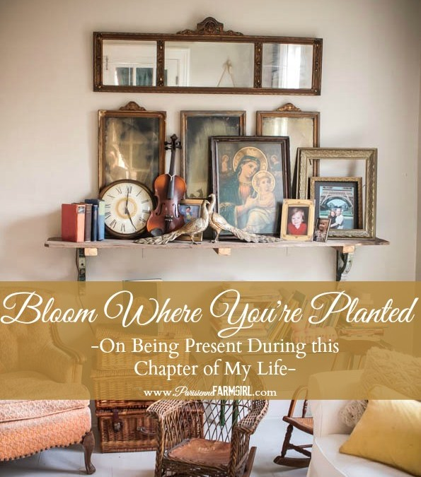 Bloom Where You're Planted (My French Inspired Living Room this Spring)