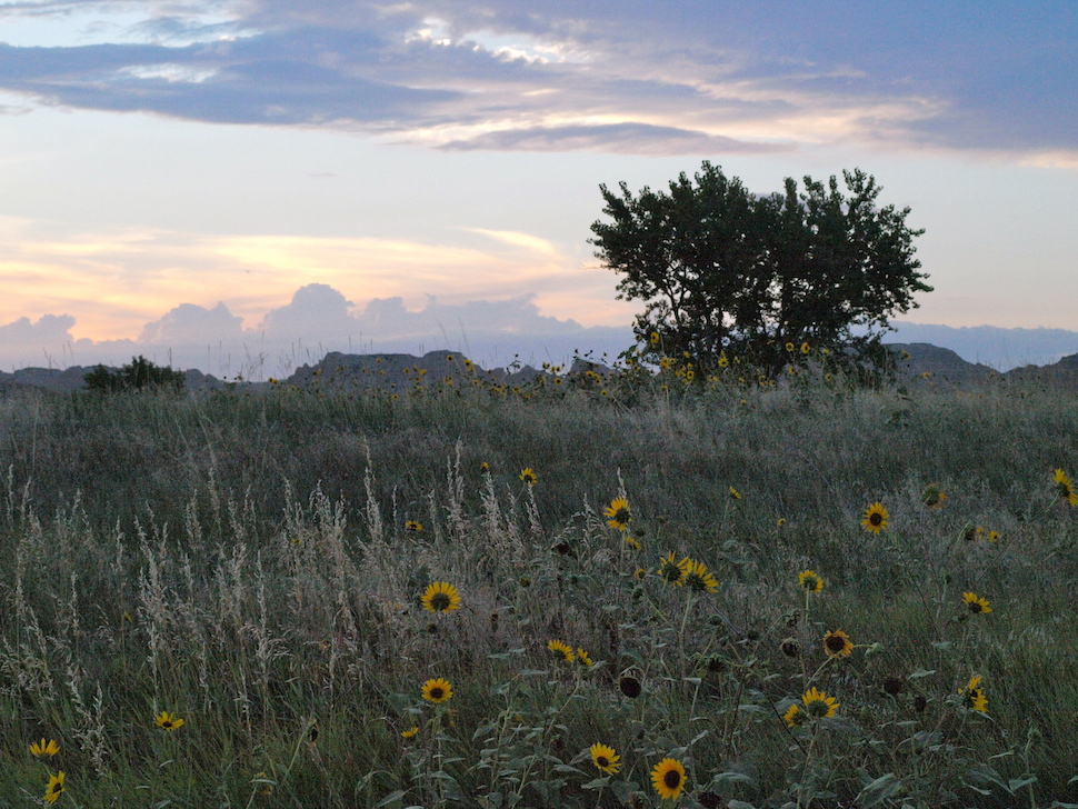 Camping in the Badlands: Best Ways to Plan for Success