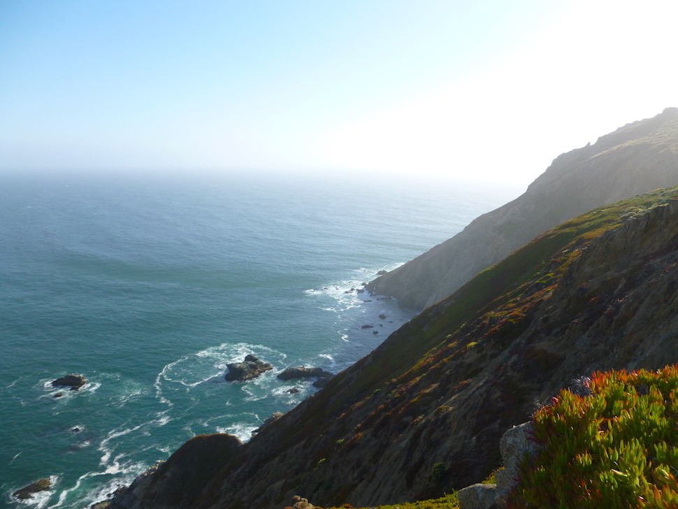 Point Reyes in Pictures