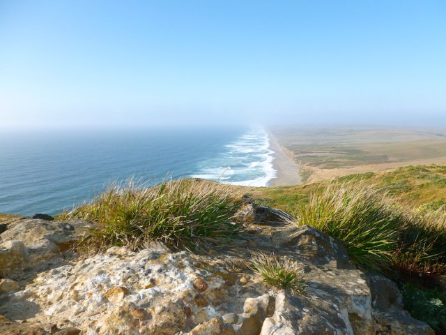 Point Reyes Shoreline