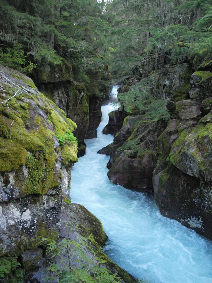 Avalanche Creek Trail