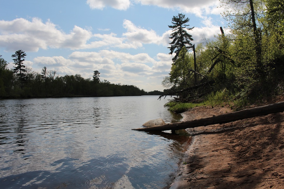 Shoreline of the St. Croix River