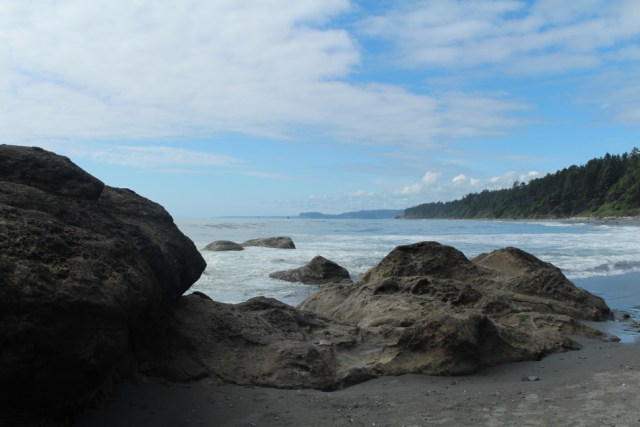 Beach - Olympic National Park