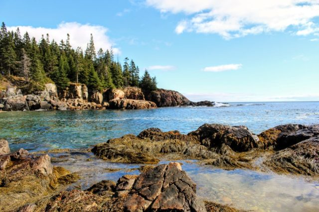Acadia National Park coastline - fees for parks like Acadia are covered with national park passes.