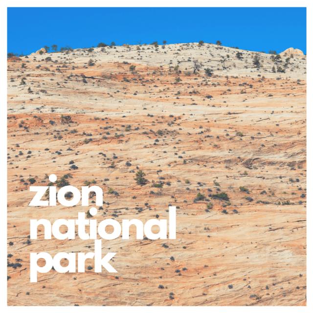Zion National Park Rocks