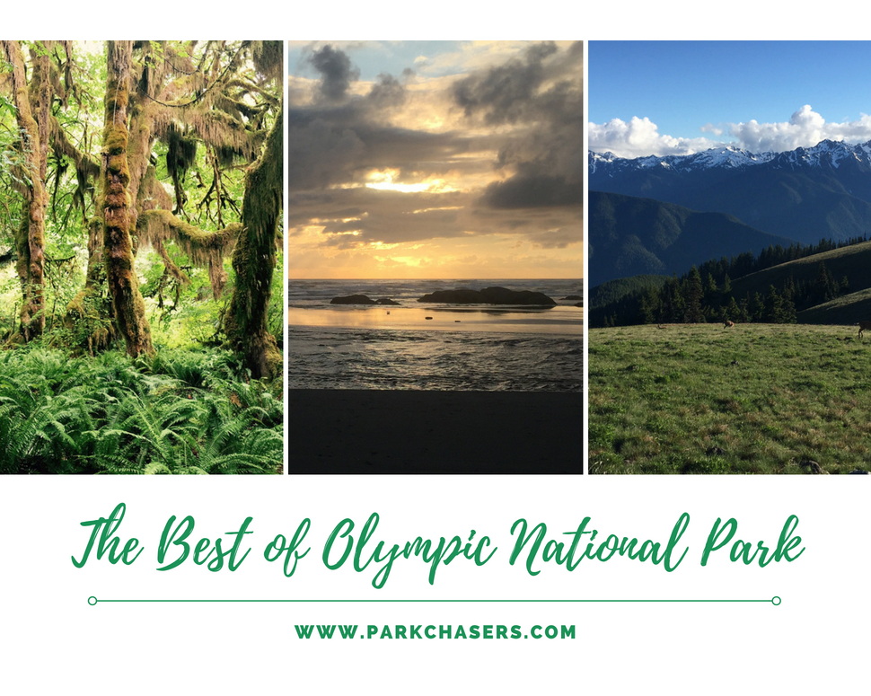 Best of Olympic National Park
