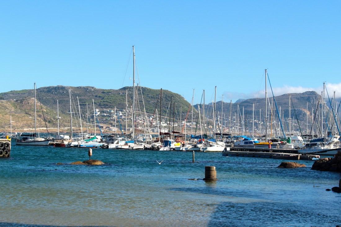 Simon's Town Fishing Wharf - Cape Town, South Africa
