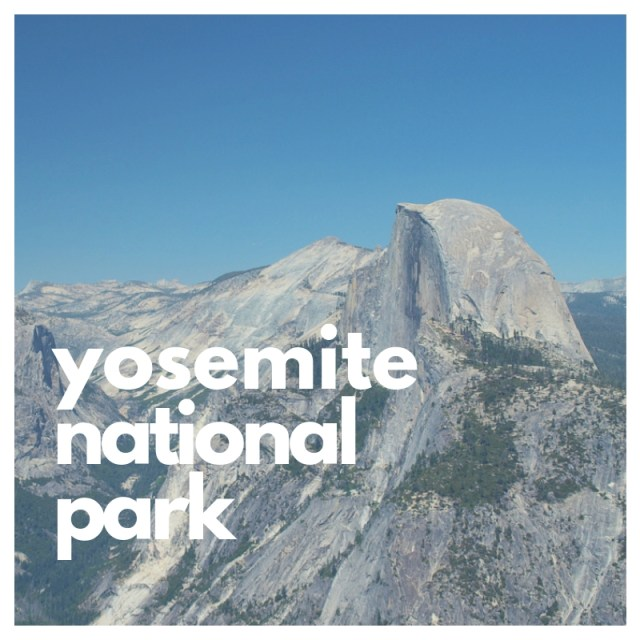 Where to see Big Trees in Yosemite