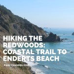 Hiking the Redwoods:  The Coastal Trail to Enderts Beach
