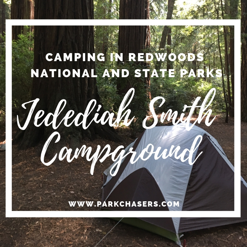 The Jedediah Smith Campground in Redwoods