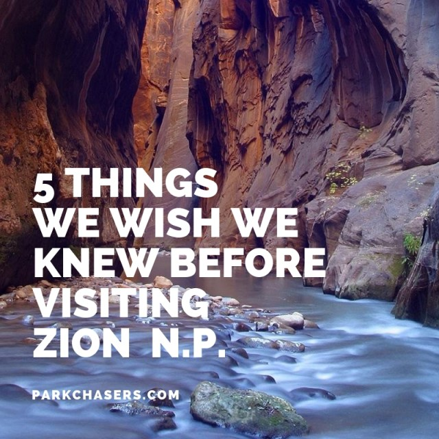 5 Things We Wish We Knew Before Visiting Zion National Park