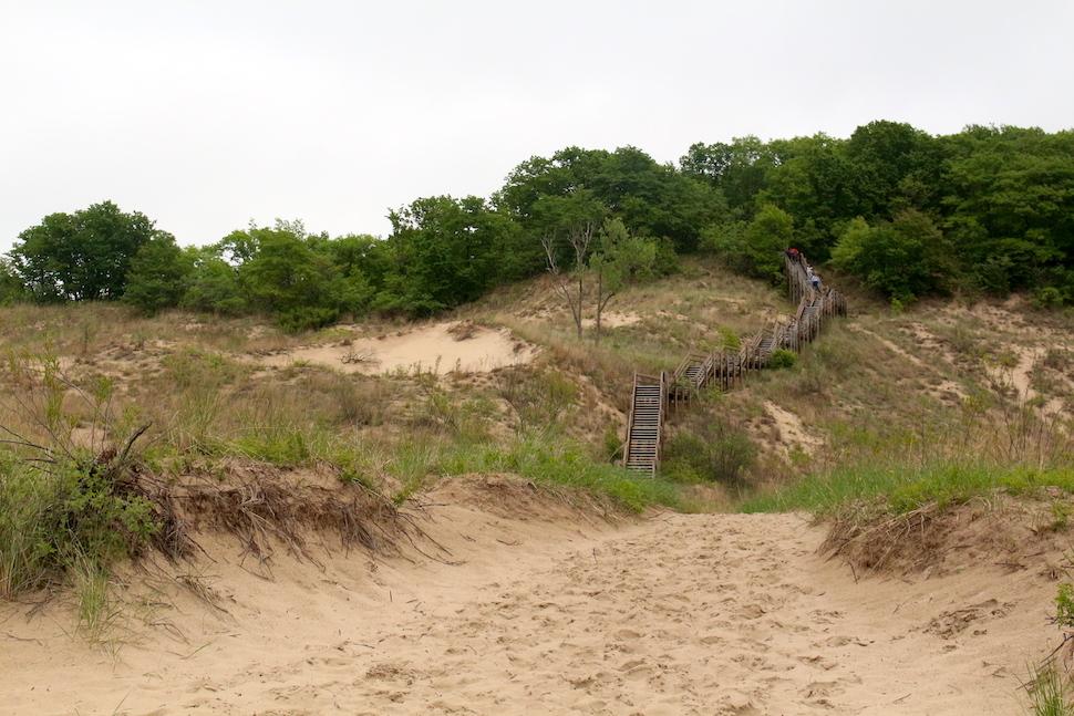 Dune Succession Trail