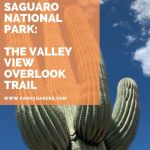 Hiking Saguaro National Park:  The Valley View Overlook Trail