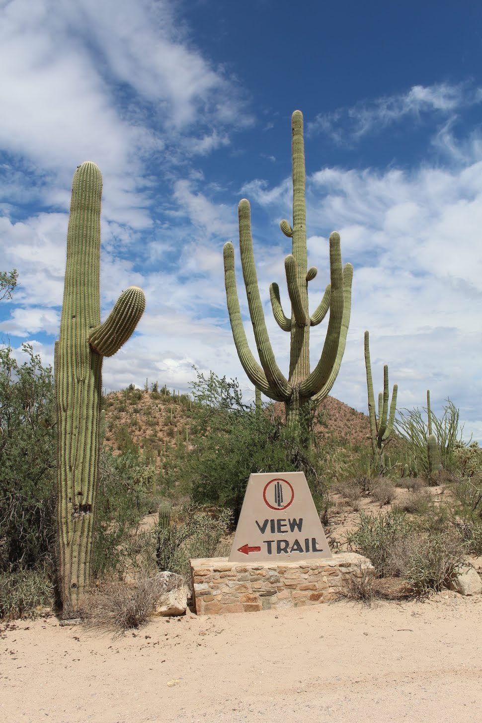 The trailhead sign for the Valley View overlook trail in Saguaro National Park