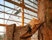 Fieldhouse – Pinnacle Climbing Wall