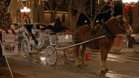 carriage-rides-parker-colorado
