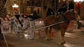 Carriage rides parker colorado