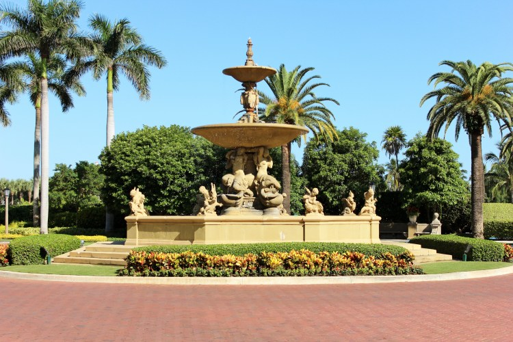 fountain, palm trees, flowers