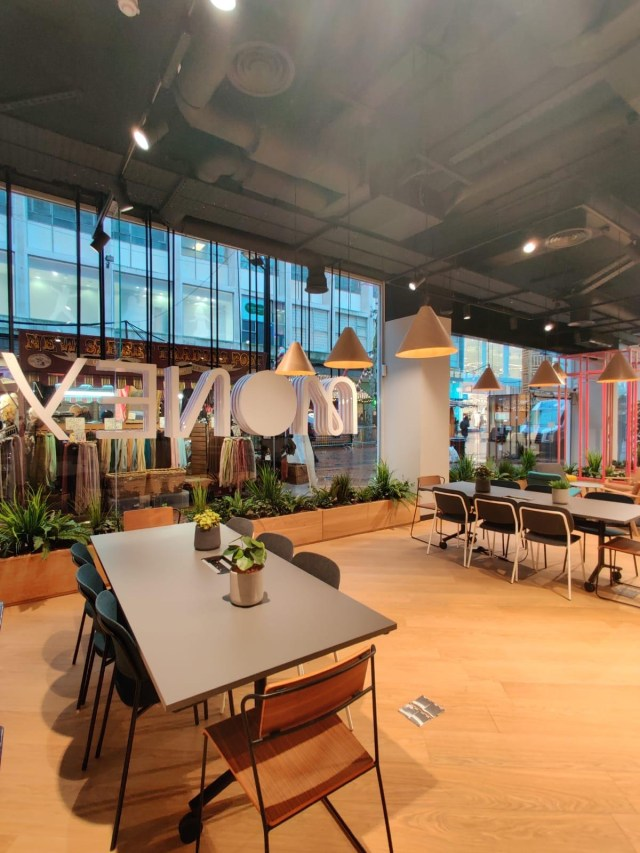 Meeting tables, chairs, collaborative space, open plan, plants, biophilia