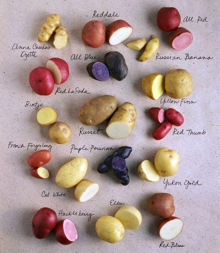 patate-parliamo-di-cucina