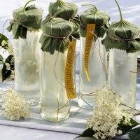 Sciroppo di fiori di sambuco