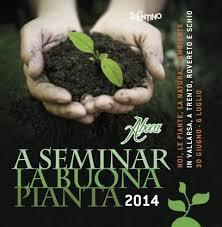 a seminar la buona pianta