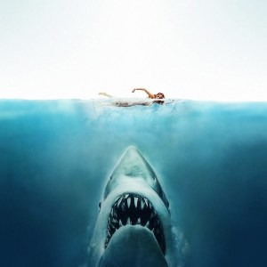 Le film de requin